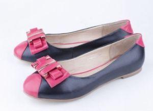 Les femmes de la mode des chaussures plates