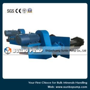 La Chine pompe centrifuge de transformation des minéraux lourds de la pompe à lisier