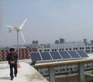 De Ce Goedgekeurde 600W Horizontale Generator van de Macht van de Wind