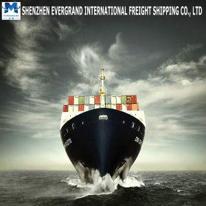 中国からの海貨物出荷