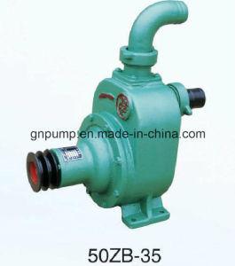 専門の2インチの自動プライミング水ポンプ50zbシリーズ
