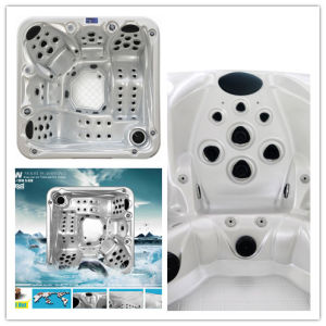5 personne un bain à remous Spa bain tourbillons (S520)