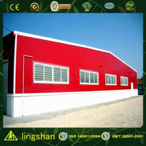2017 новых зданий металла конструкции сделанных в Китае (L-S-107)