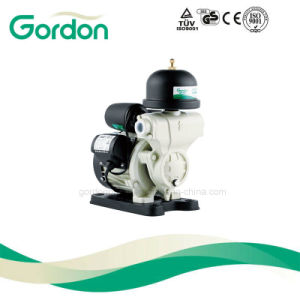 Kleine elektrische selbstansaugende Pumpe des Wasser-Ga101 mit Messingantreiber