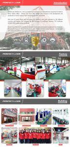 Hotsale Pedk-130250 이산화탄소 Laser 조각 절단 기계장치