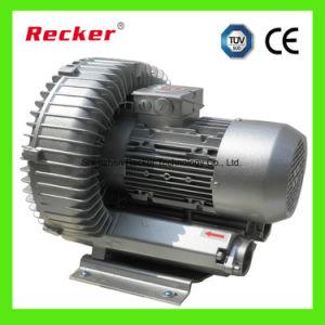 Recker 2.2KW erstklassige Vakuumpumpe für Textilmaschinen