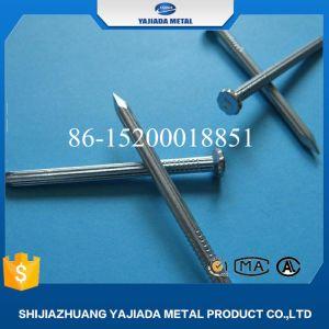 De Concrete Spijkers Van gehard staal van uitstekende kwaliteit