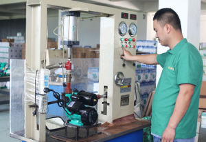 Superficie eléctricos hogar centrífugo de autocebado Cpm la bomba de agua