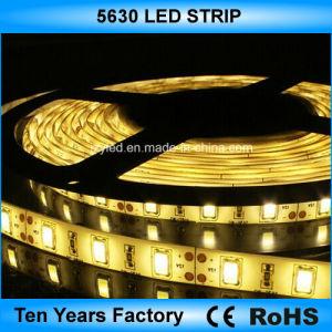 Gli alti lumen 12V impermeabilizzano l'indicatore luminoso di striscia dei 5630 LED