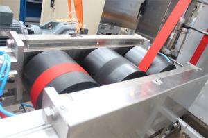 Nastri fabbrica continua della rifinitrice e di tintura del raso del poliestere