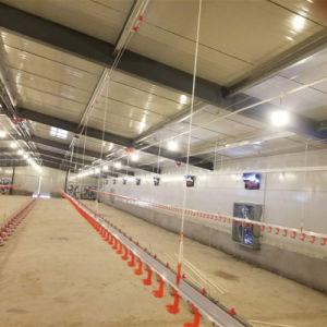 環境の制御された家禽の農機具