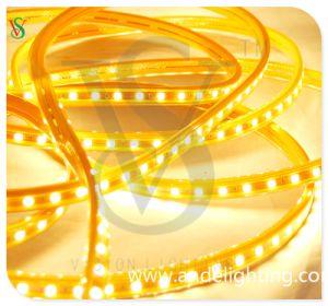 LED impermeabile Strip Light SMD Rope Light 230V