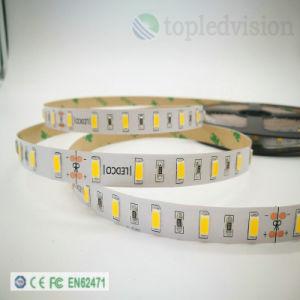 Illuminazione di striscia di SMD5730 LED 60LEDs/M 15W per la decorazione