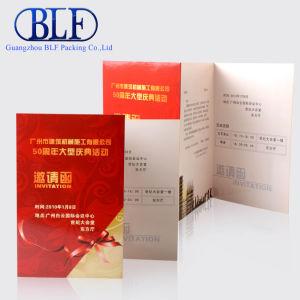 Пользовательские брошюра бумаги высокого качества печати