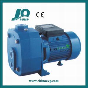 Pompe à jet Self-Priming puits profond (DP505A)