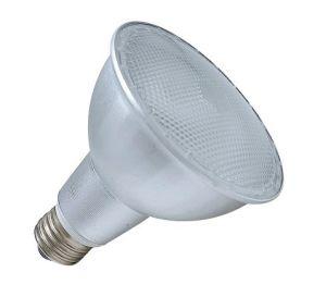 Energie - besparing Lamp PAR (CFLR01-PAR30)