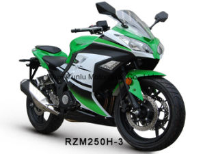 기관자전차 150cc/200cc/250cc를 경주하는 Rzm250h-3