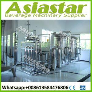 Riga automatica industriale di trattamento del filtro da acqua minerale SUS304/316