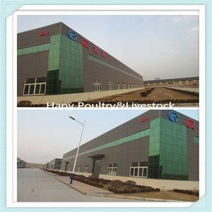 Prefabricados de estructura de acero de bajo costo de construcción/Almacén