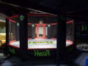 Gabbia dell'ottagono del professionista di randello di arti marziali MMA