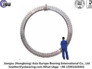 La Chine fabricant de roulement de pivotement 011.75.3150
