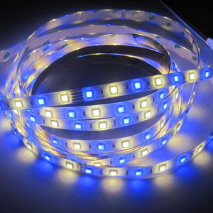 SMD LED flexibles impermeables 5050 tira