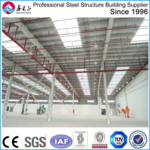 Edificio de estructura de acero para el taller y almacén con SGS (ZY327)
