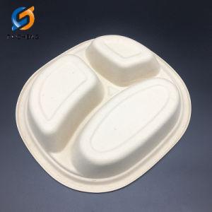 La paille de blé biodégradable plaque 3 compartiments avec couvercle