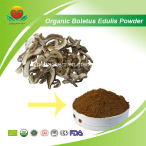 Fertigung-Zubehör-organisches Boletus-essbares Puder