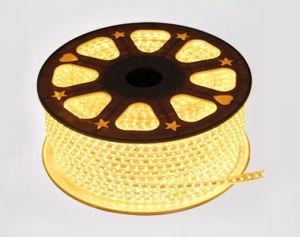 AC110V-220V 5050 tira de cinta de LED