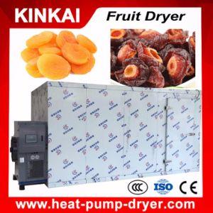Heißluft-trocknender Raum-Typ Obst und Gemüse Trockner