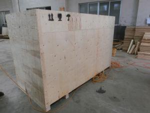 Die Möbel, die Holzbearbeitung-Maschinerie-Präzisions-Schiebetisch-Panel bilden, sahen (CNC-32TA)
