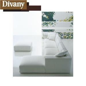 Un design moderne classique de bonne qualité de la salle de séjour un canapé