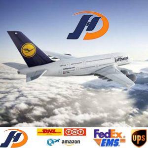 El mejor servicio de carga aérea internacional de EEUU/UK/Europa/Canadá/todo el mundo Amazon DDU DDP de puerta en puerta el más rápido y barato