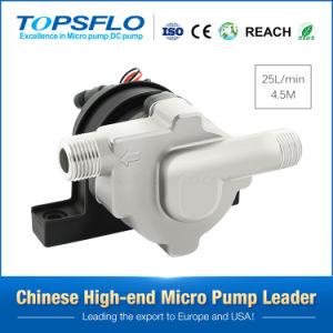 Topsflo Td5 du système PV solaire Pompe 12V DC