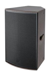 De bonnes performances bidirectionnel Sound Box Pro 15 pouces de haut-parleurs
