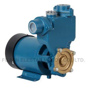 Gp-125 0,37 KW/0.5HP Bomba de agua eléctrica 220V/110V para el mercado de Iraq
