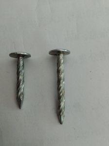 De eletro-gegalvaniseerde Spijkers van het Dakwerk van de Steel van de Schroef met de Prijs van de Fabriek