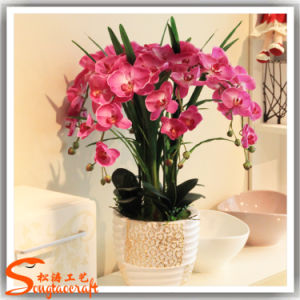 Barato decorativas Planta de Flores Bonsai Artificial