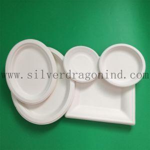 Unicolor la canne à sucre la plaque de pâte à papier, plaque jetables en papier