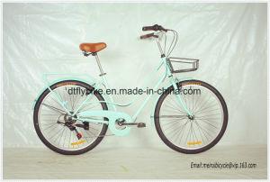 26inch 네덜란드 자전거, 바닷가 자전거, Shimano 6speed 의 도시 자전거