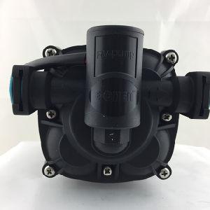 La bomba de transferencia de 12 L/M 3.2 Gpm a 65 psi de diafragma de 4 cámaras