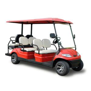 後部座席が付いている4つの車輪の電池の電気スマートな車