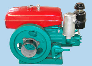O motor diesel (DS1110)
