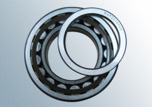 Rodamiento de rodillos cilíndricos (NUP2210TVP)