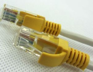 肝蛭のパス(SH-C7003)が付いているUTP Cat5e/CAT6のパッチ・コードケーブル