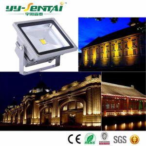 セリウム公認の屋外IP65 LEDのフラッドライト(YYST-TGDJC1-20W)