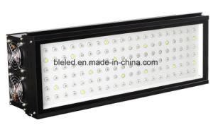 La fabbrica 400W LED di Shenzhen si sviluppa chiara per la pianta