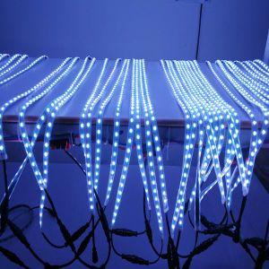 Striscia dell'indicatore luminoso DMX LED della fase del LED