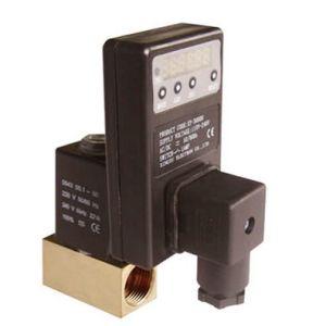 Valvola di scarico automatica del solenoide regolato col contasecondi elettrico (CS-720)